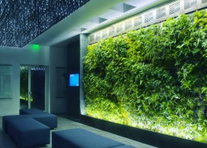 JCCC Greenwall2