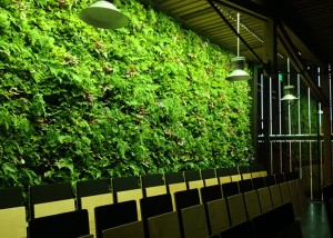 Green wall lighting in schools