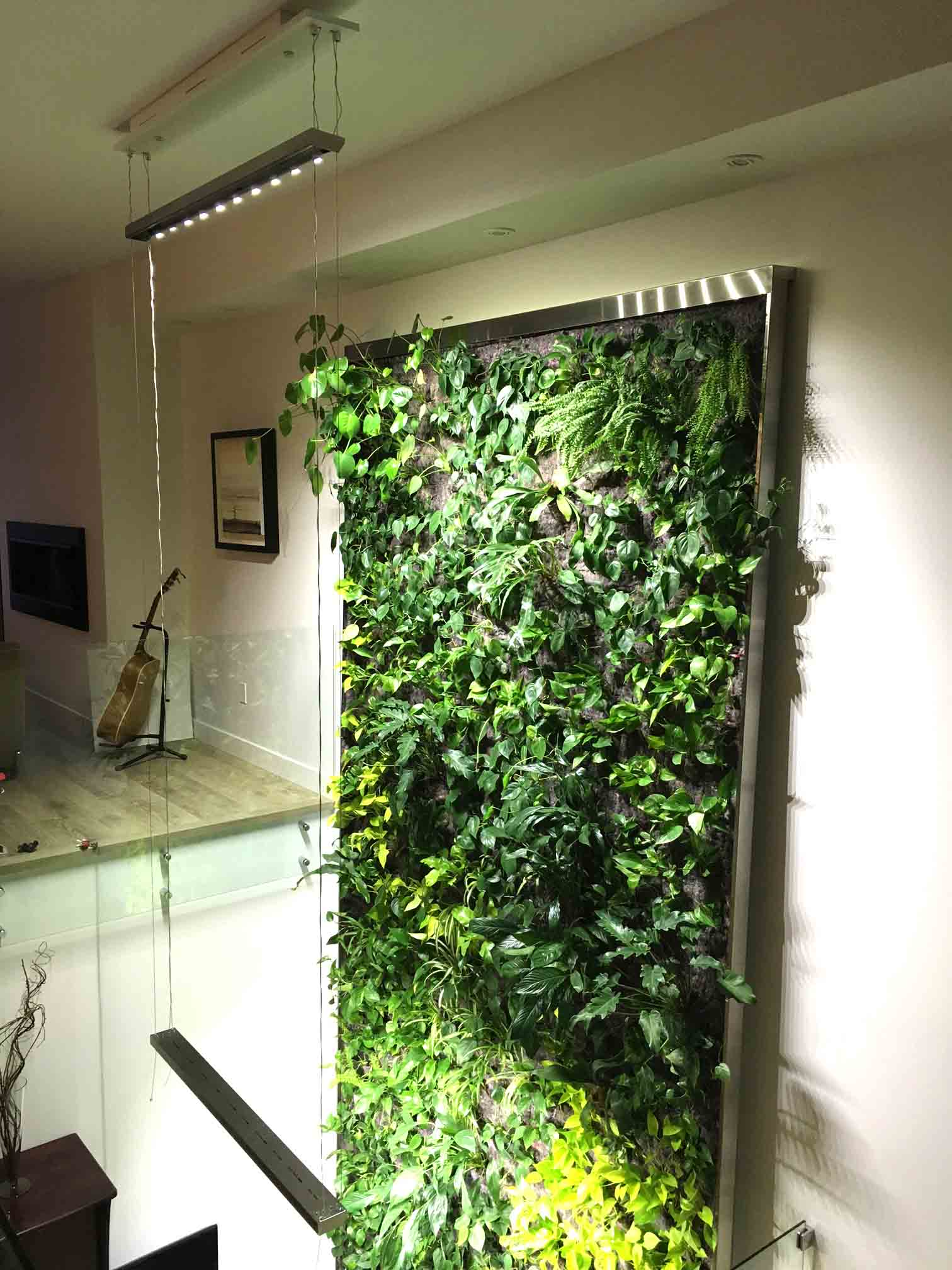 Green Wall Bonanza Sunlite Science And Technology Inc