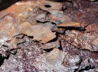 Car wash corrosion problems