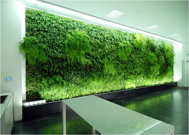 Green wall lighting sunlite science and technology inc ku cdr greenwall 2011 mozeypictures Images