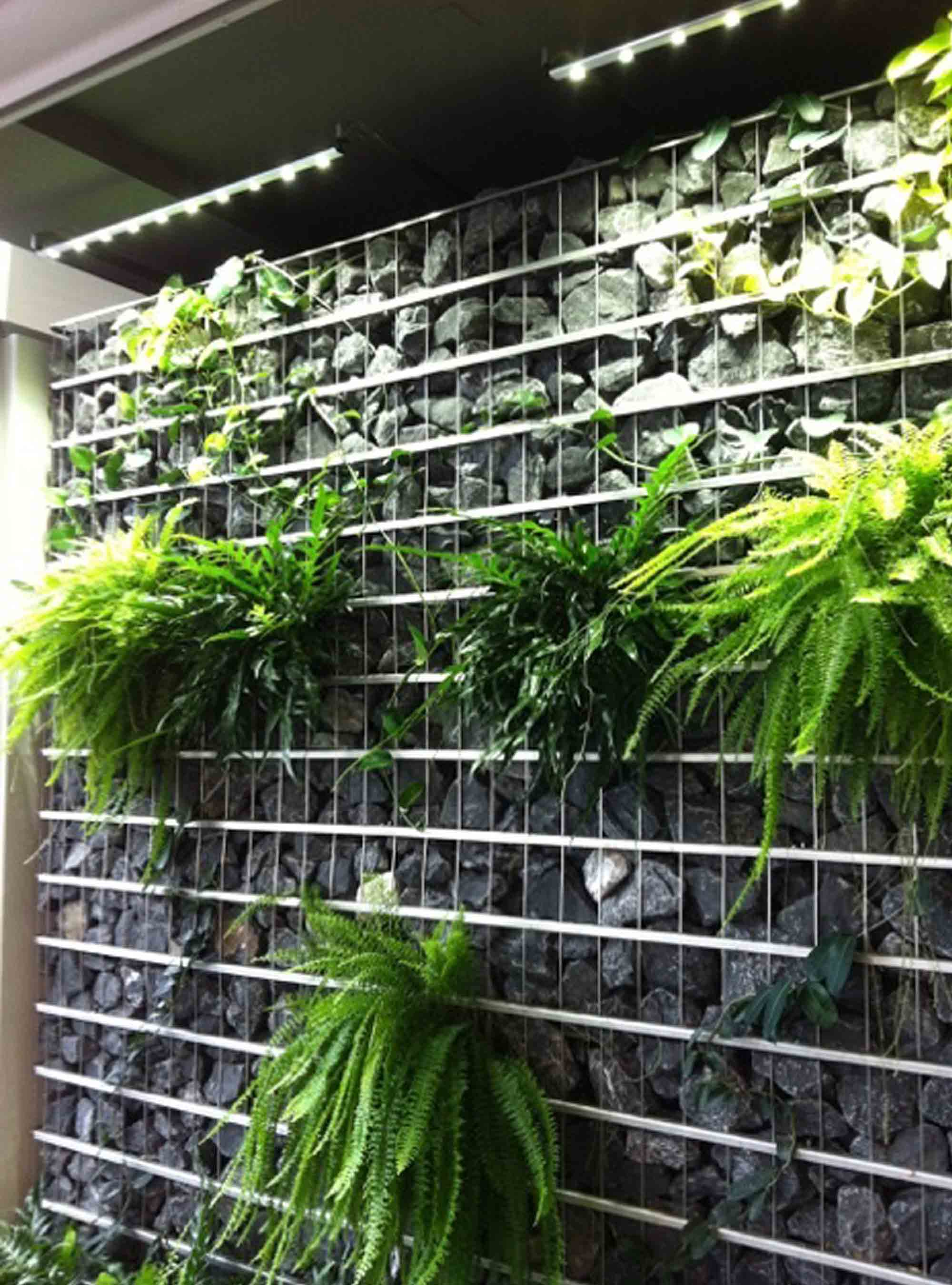 Green wall lighting sunlite science and technology inc canada rock wall rock wall aloadofball Gallery