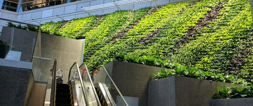 New Green Wall at 1000 Wilson Boulevard