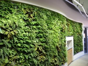 Arch Nexus Green Wall